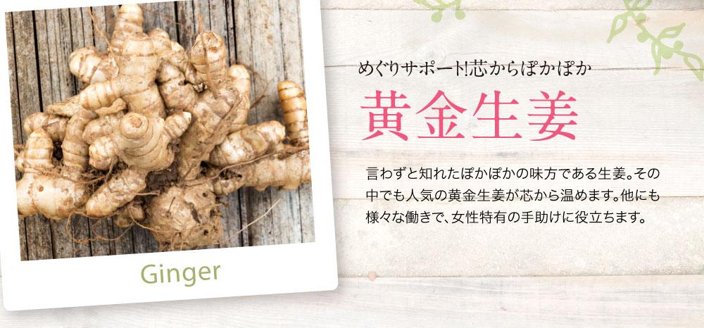 ぽかぽかの味方で冷え・血流を改善する黄金生姜。